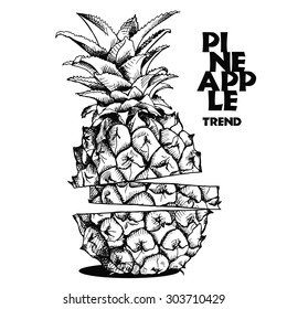 Image slices of pineapple fruit. Vector black and white illustration.