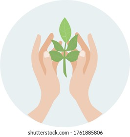 image of two human hands holding a green sprout of a tree.stock isolated illustration on white background for printing on postcards, websites, shop advertising in cartoon style