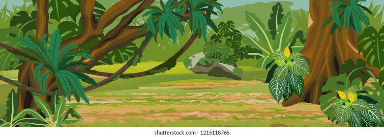 Impassable thick jungle. A tropical forest. Rainforests of Amazonia. Tree, epiphytes, creepers, banana trees, flowers and monsteras. Realistic Vector Landscape