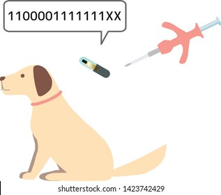 implant microchip to a dog