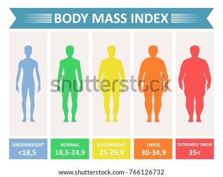 Index Mass Body Rating Chart Body Stock Vector Royalty Free