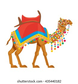 Indian camel traditional colorful decorated