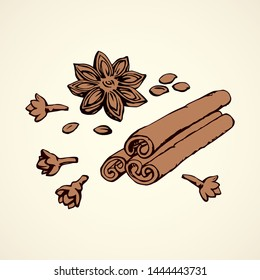 Indian dry anisestar badiam pod of anis bud, cannella cassia bark on white backdrop. Bright brown hand drawn staranise, cinamon in retro art doodle style. Close-up macro chinese sweet cinammon product