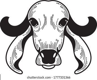 Indian Gir Cow Breed Vector