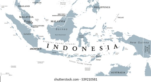 Indonesia political map with capital Jakarta, islands, neighbor countries Malaysia, Singapore, Brunei, East Timor and capitals. Gray illustration with English labeling on white background. Vector.