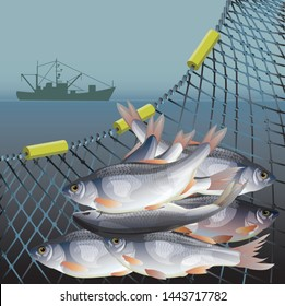Industrial fishery poster with fish in nets and fishing vessel. Vector illustration