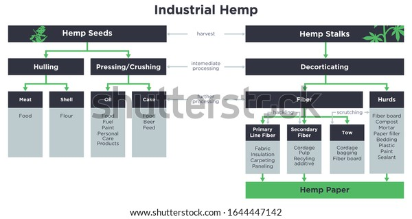 Industrial hemp uses and products flowchart....