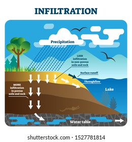 Infiltration vector illustration. Labeled natural precipitation water cleaning through underground soils, rocks and minerals. Scheme with earth climate scene. Educational geography climate circulation