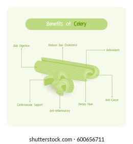 Infographic for celery benefits with handwriting font style