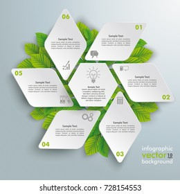 Infographic design with rhombus star and green leaves on the grey background. Eps 10 vector file.