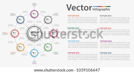 infographic design template circles business concept stock vector