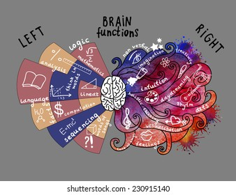 Infographic Elements. Brain concept. Hand drawn brain infographic. Left and right brain functions.
