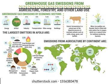 Infographic of global greenhouse gas emissions by agriculture, forestry and other land use sector. Methane. Ecological environment pollution. Global warming, climate change vector infographic.