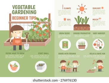 infographic for kids about how to grow vegetable beginner tips