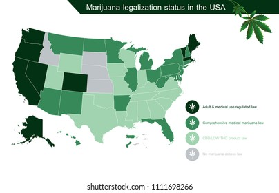 infographic marijuana legalization status in the usa