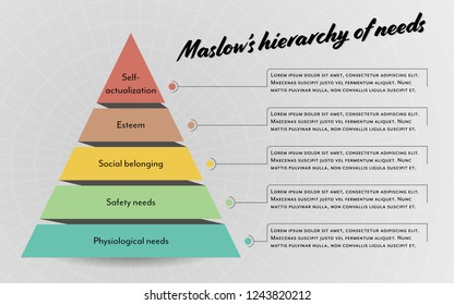 Infographic pastel color vector with maslow hierarchy of needs business content