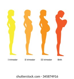 Infographic of pregnant woman in different period. Vector illustration