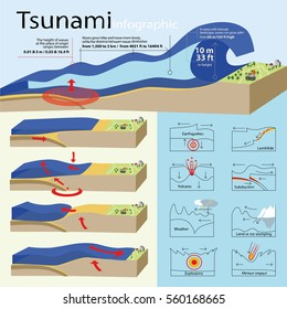 The info-graphic is showing how tsunami are created and also about tsunami classification/Tsunami