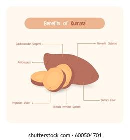 Infographic for sweet potatoes (Kumara) benefits with handwriting font style