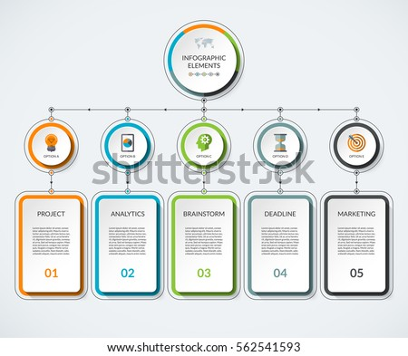 infographic template 5 option circles columns stock vector royalty