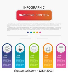 Infographic template with 5 options, vector circles template design for annual report, workflow and business presentation.