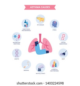 Infographics of bronchial asthma causes flat cartoon style, vector illustration isolated on white background. Respiratory disease triggers, lungs and inhaler and asthma risk factors icons