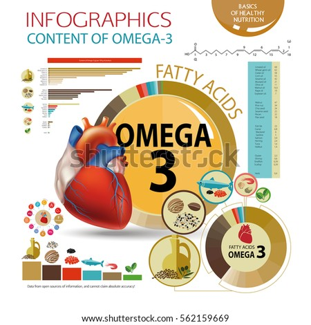 Infographics Foods Highest Content Omega 3 Healthy Stock Vector