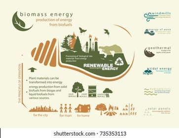 infographics renewable source of biomass energy and operation