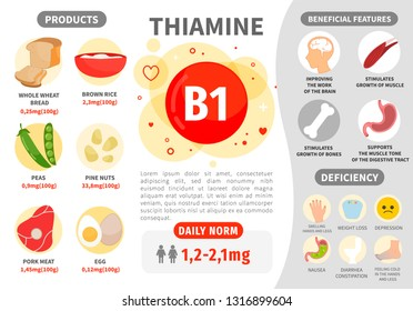 Infographics Vitamin B1. Products containing vitamin. Daily norm. Symptoms of deficiency. Vector medical poster.