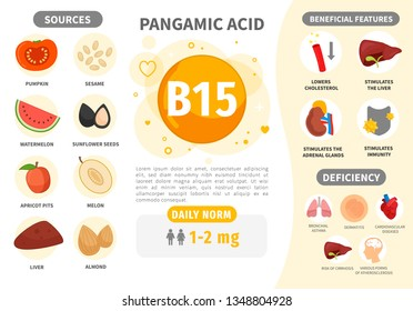 Infographics Vitamin B15. Products containing vitamin. Daily norm. Symptoms of deficiency. Vector medical poster.