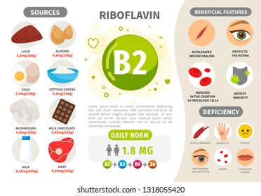 Infographics Vitamin B2. Products containing vitamin. Daily norm. Symptoms of deficiency. Vector medical poster.