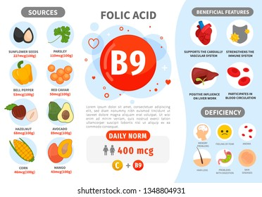 Infographics Vitamin B9. Products containing vitamin. Daily norm. Symptoms of deficiency. Vector medical poster.