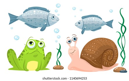 The inhabitants of the pond, funny and cute drawing elements are typical. Frog, snail, fish, algae and stones.