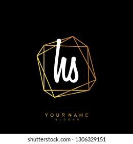Initial HS handwriting logo vector