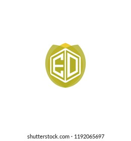 Initial Letter E, D, ED Hexagonal Shape Logo Design with Leaf, Nature, Ecology, Environment Illustration Icon