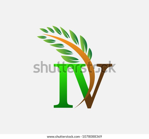 Initial Letter Logo Iv Agriculture Wheat Stock Image