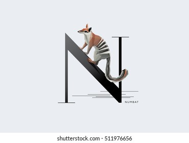 Initial letter N decorated with Australian Numbat anteater in contemporary minimal style