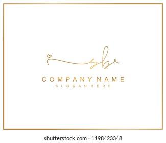 Initial S B handwriting logo template vector