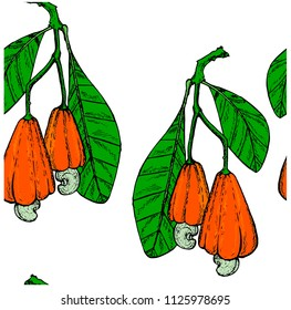 Ink colored Cashew tree branch seamless pattern with greed leaves, red fruits, nuts. Coloring design element for web, for print stock vector illustration