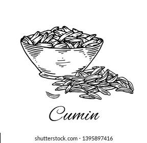 Cumin Seeds Stock Vectors, Images & Vector Art   Shutterstock