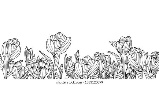 Ink decoration border with sketchy crocus flowers.  Springtime violet flower. Seamless border.