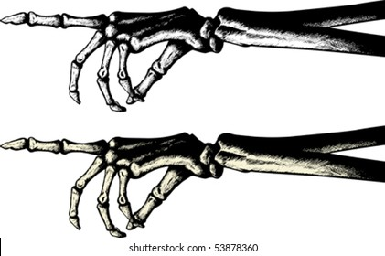 Ink drawing of a pointing skeleton hand