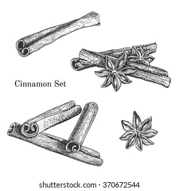 Ink hand drawn cinnamon set