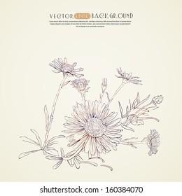 Ink sketch of flowers.Vector illustration.