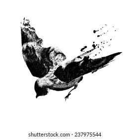 Ink-drawn flying birds 1c