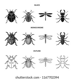 Insect, bug, beetle, paw .Insects set collection icons in black,monochrome,outline style vector symbol stock illustration web.