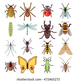 Insect flat icons isolated on white background. Bug and mosquito, fly and spider. Vector illustration