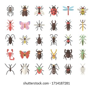 insect flat vector icons bug and garden concept