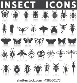 Insect icons