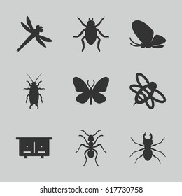 Insect icons set. set of 9 insect filled icons such as beehouse, beetle, butterfly, ant, bee